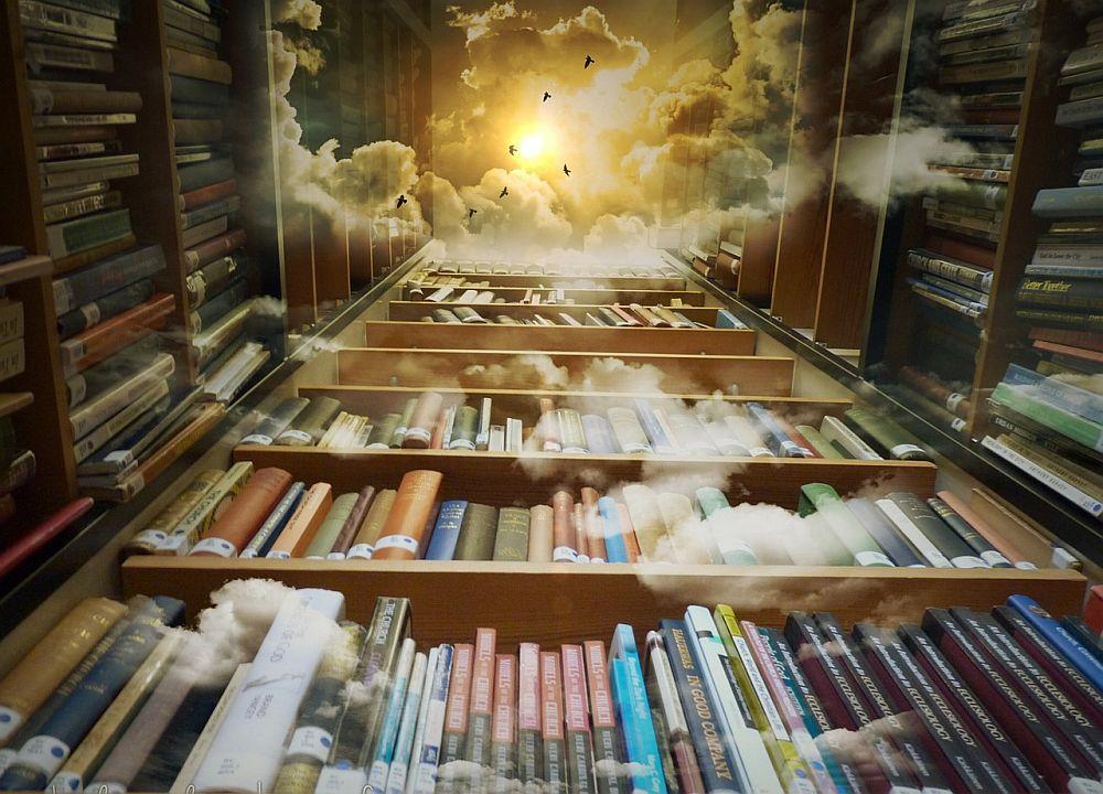 zdjęcie, książki na półce