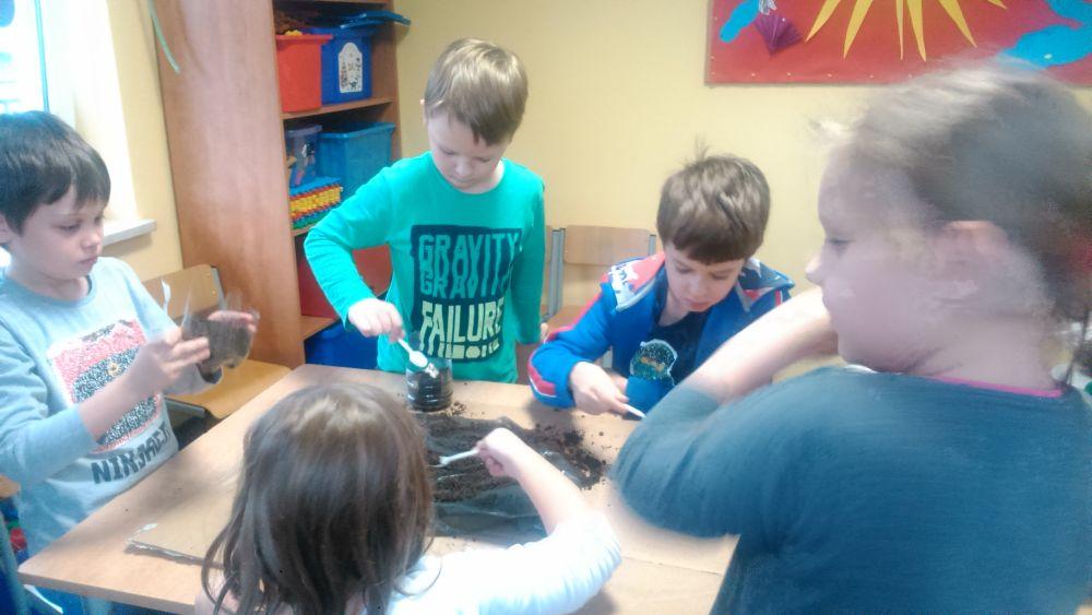 Uczniowie sadzą hiacynty