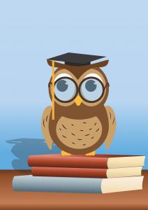 obrazek sowy siedzącej na książkach