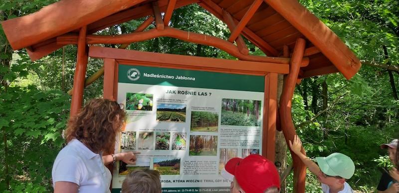 dzieci stoją przed tablicą informująca - Jak rośnie las